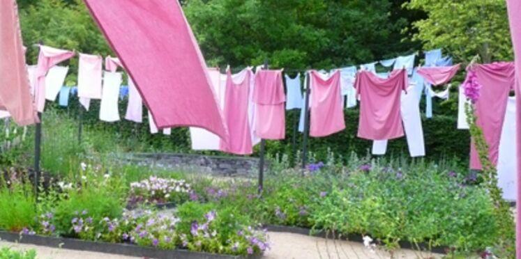 Chaumont-sur-Loire : un festival de couleurs pour les jardins