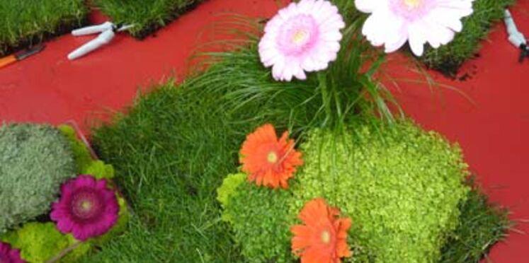 Un centre de table végétal pour ma décoration de table