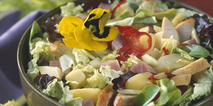 Salade multicolore