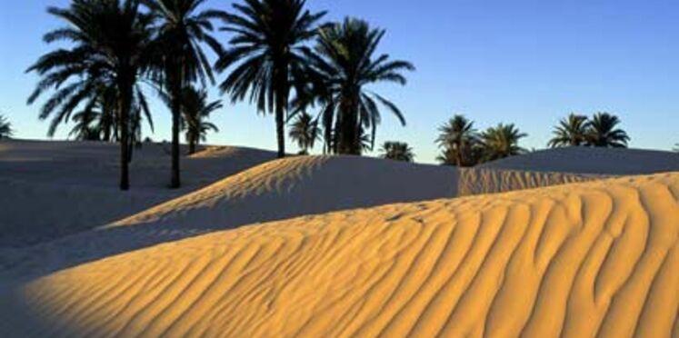 Toussaint : on repart au soleil pour moins de 700 euros