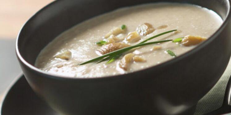 Recettes de soupes gourmandes