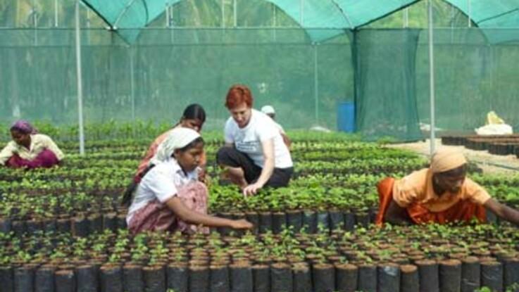 """""""Plantons pour la planète"""" : en Inde, avec notre lectrice"""