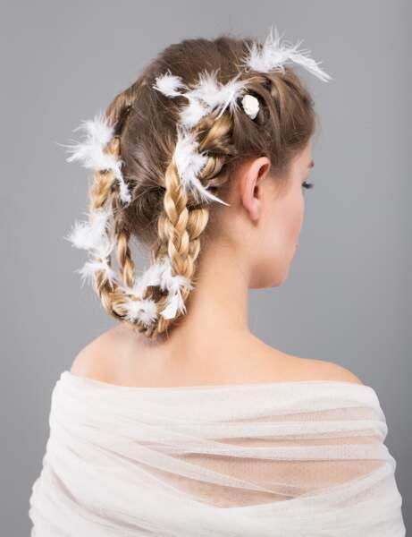 Les plumes délicates