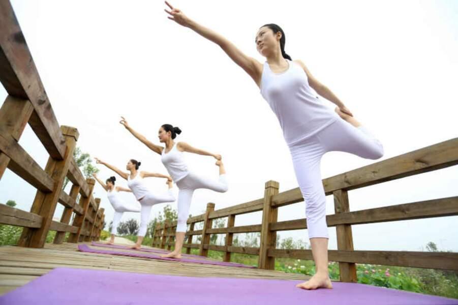 Yoga Day : il existe des milliers de postures, il y en aurait 84.000