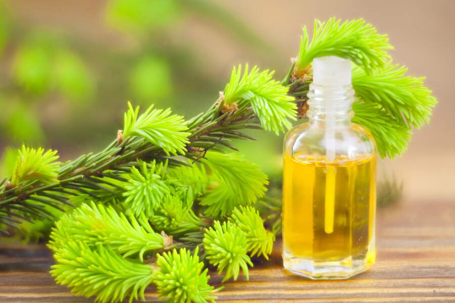 Se masser à l'huile essentielle de tea tree