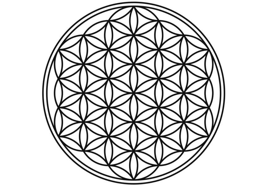 Le mandala de la Fleur de vie