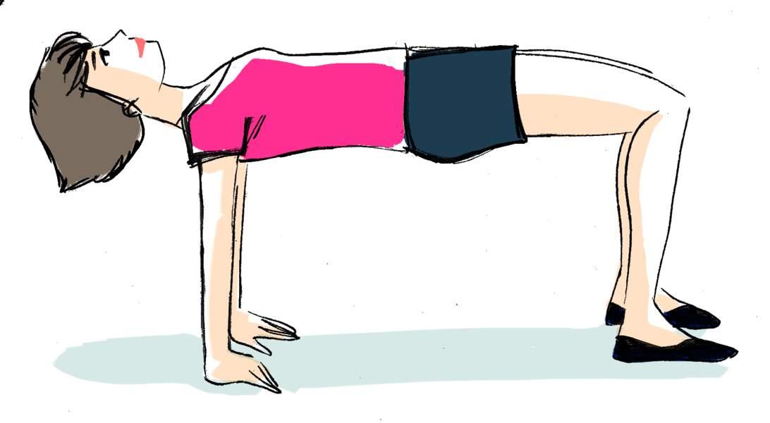 Le dos, exercice 2