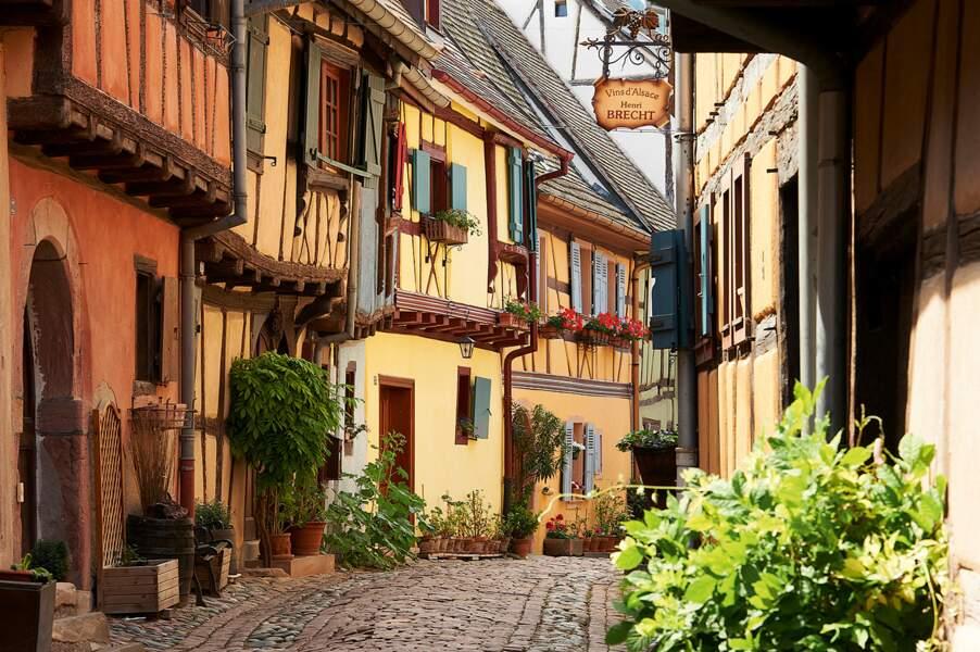 Eguisheim - Haut-Rhin (68)