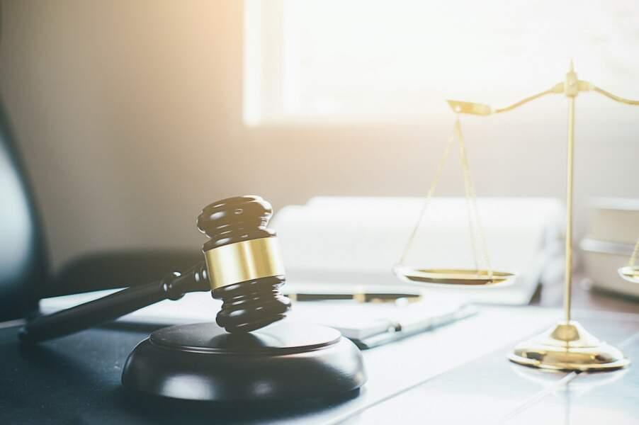 11 - Administrateur liquidateur judiciaire