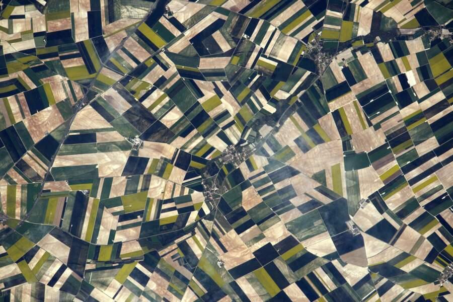 Du Mondrian ? Non, les champs de Picardie !