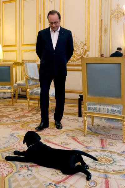 François Hollande et son chien Philae, en 2014