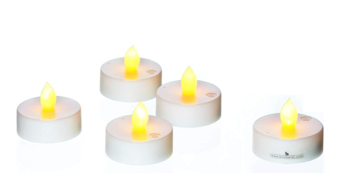 Bougies chauffe-plat Bloolands