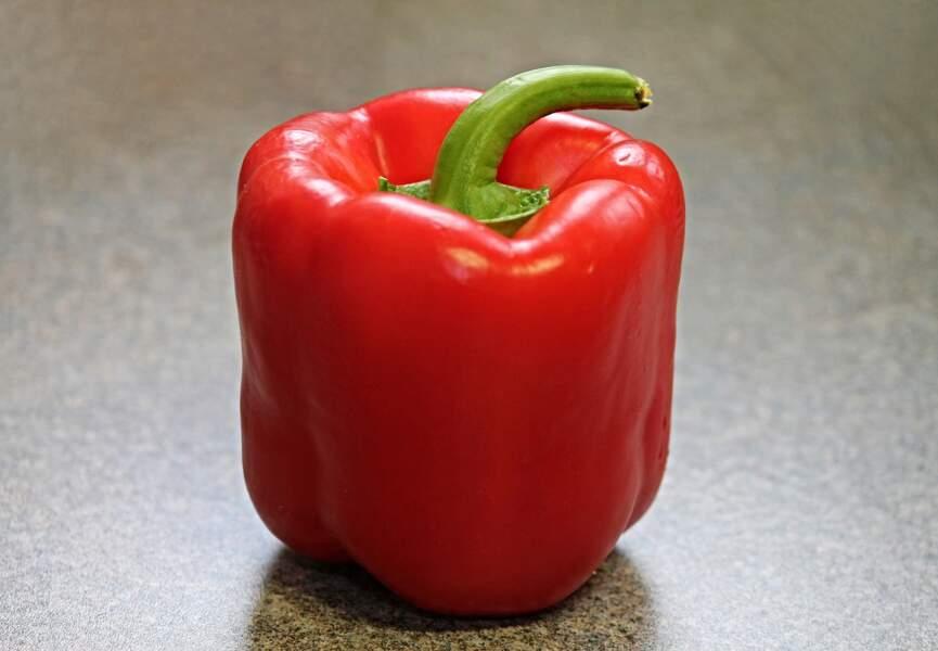 Le pénis en forme de poivron
