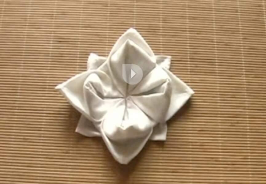 Une fleur de lys