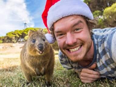 Allan Dixon, le roi du selfie avec des animaux