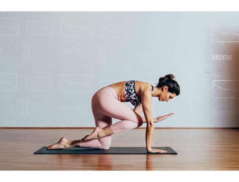 Flexions-extensions