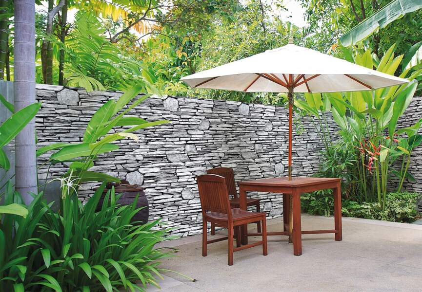 Idée déco au jardin : comment habiller un mur ?