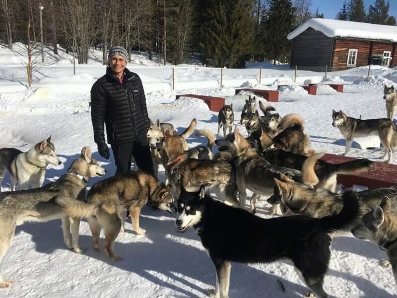 Avant de se reposer, il faut avant tout penser au bien-être des huskies