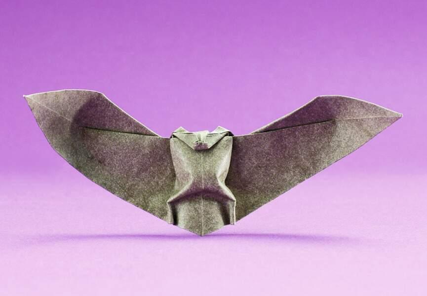 Des chauve-souris en origami