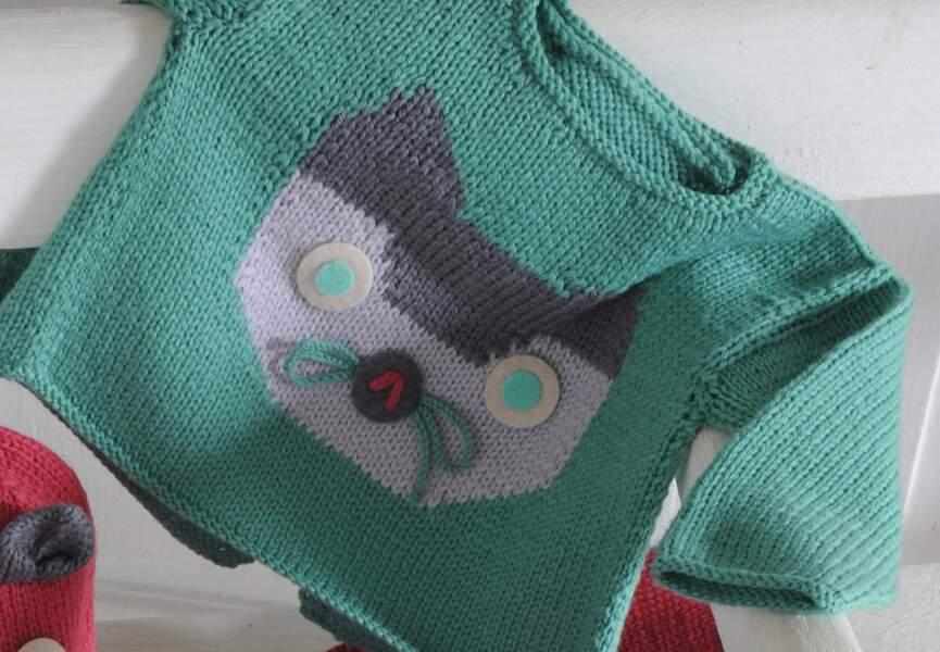 Un pull chat à tricoter