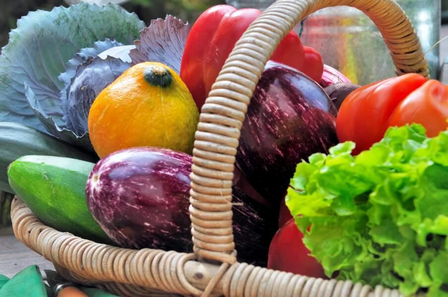 Tous les légumes