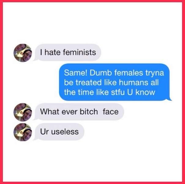 """Je hais les féministes"""