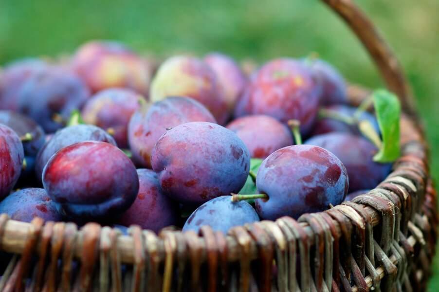 Fruit minceur : la prune 43 kcal pour 100g
