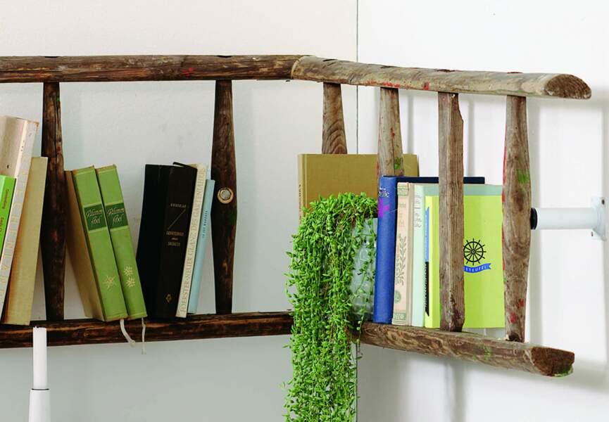 Une échelle en étagères à livres