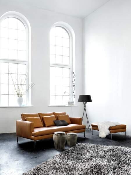 canapé ultra beau en cuir