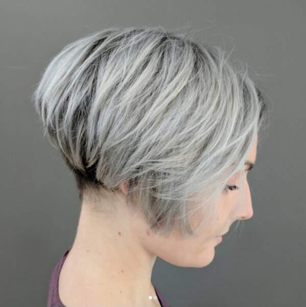 20 Idées De Coupes Et Coiffures Pour Cheveux Blancs Femme
