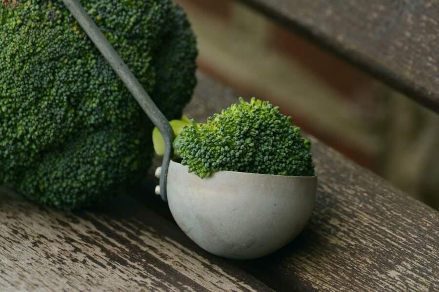 8. Le brocoli