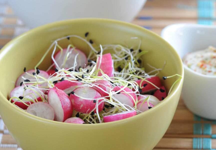 Salade de radis et germes de poireau