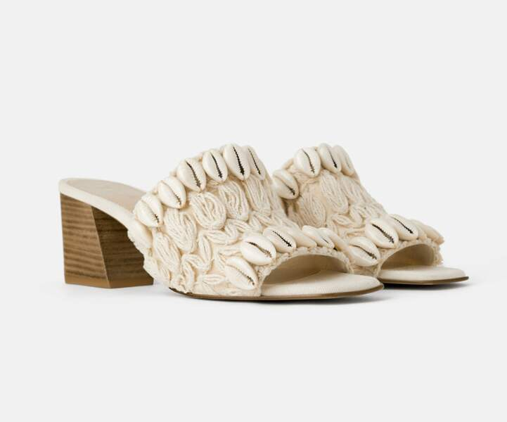 Mule : coquillage