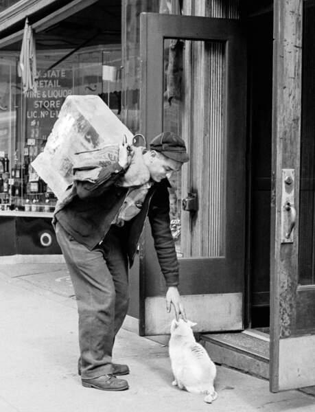 Un passant caressant un chat dans la rue