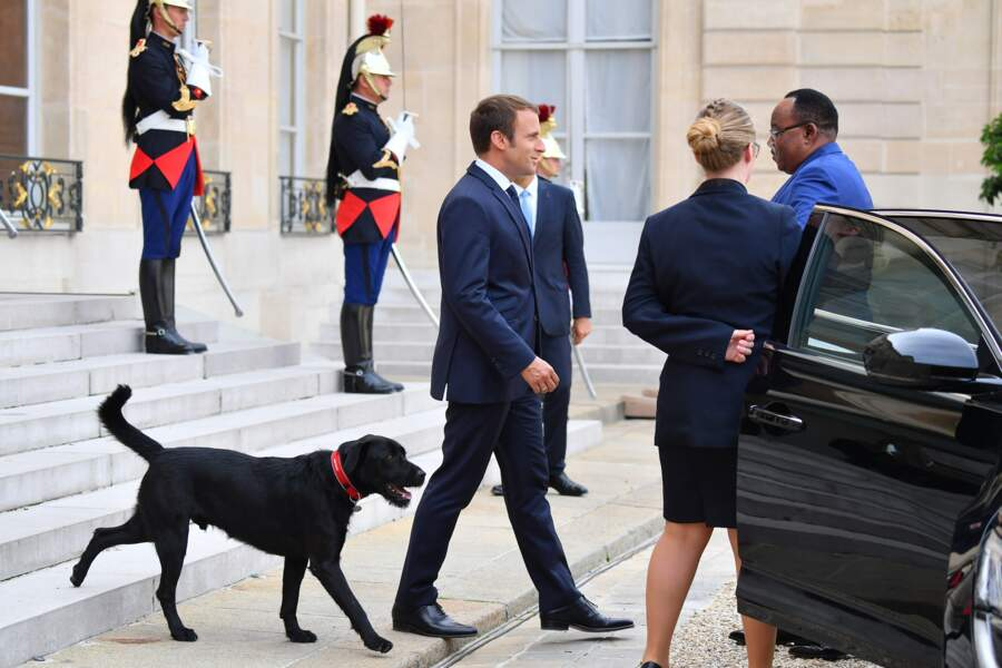 Emmanuel Macron avec Nemo, devant l'Elysée, en 2017