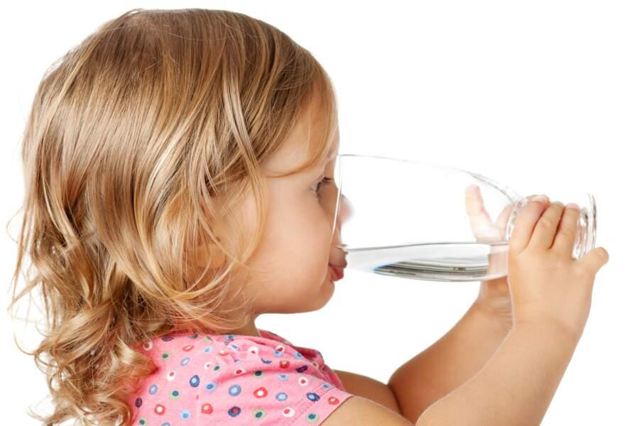 Proposez-lui de l'eau fraîche