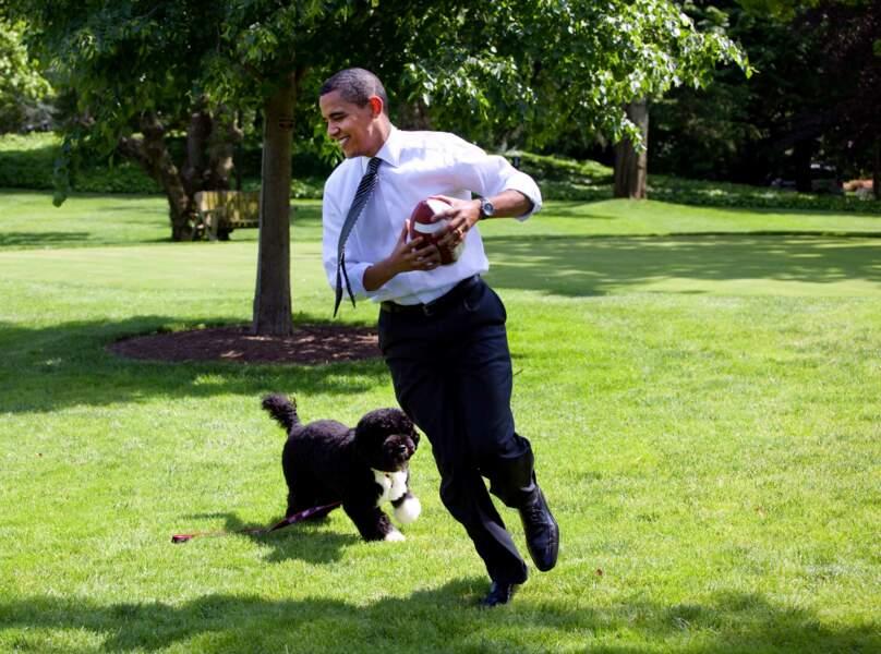 Barack Obama jouant avec Bo en 2009