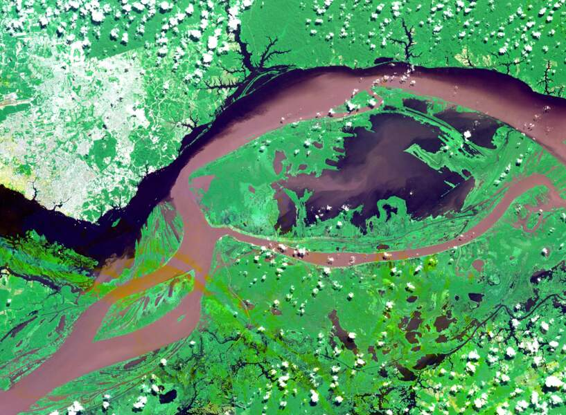 La rencontre de l'Amazone et du Rio Negro à Manaus, dans la jungle brésilienne