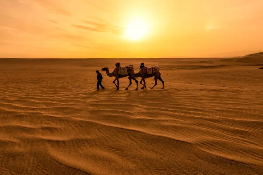 Maroc – Sahara occidental