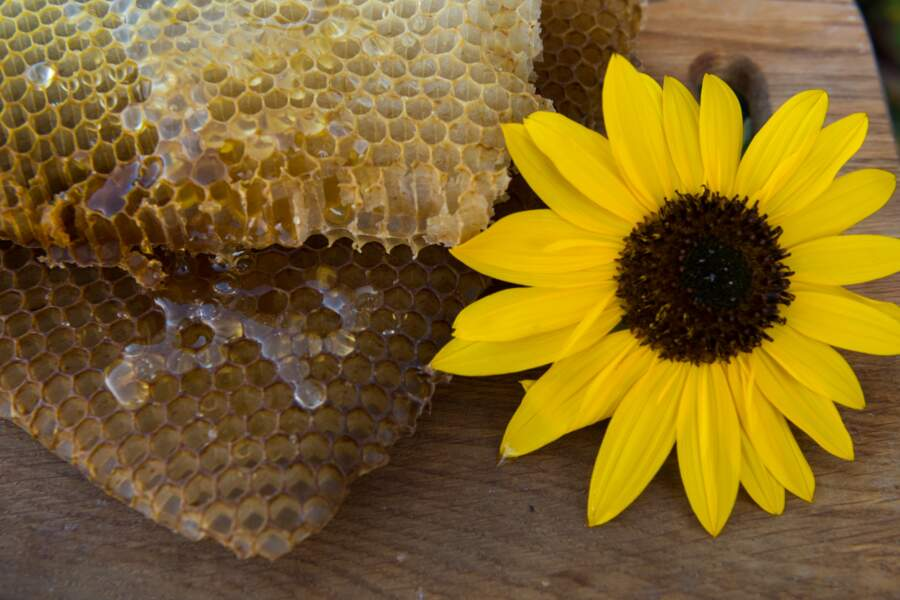 Adopter les produits de la ruche