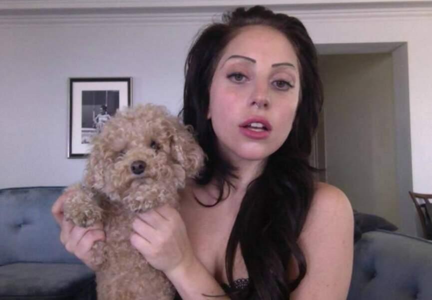 Le chien de Lady Gaga