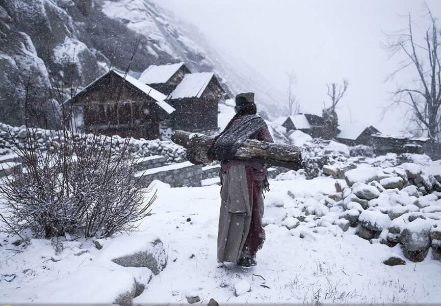 Himachal Pradesh, India, une vieille femme porte du bois sur son dos