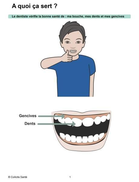 L'examen dentaire : A quoi ça sert ?