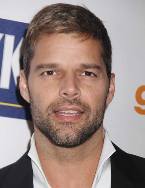 Ricky Martin : des jumeaux par mère porteuse