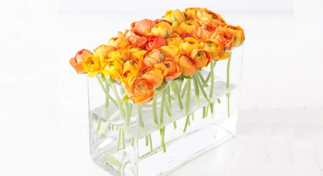 Composition florale : des renoncules flottantes