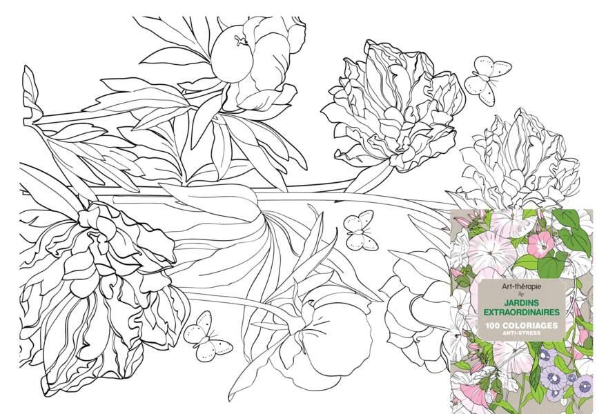 """Coloriages """"jardins extraordinaires"""""""