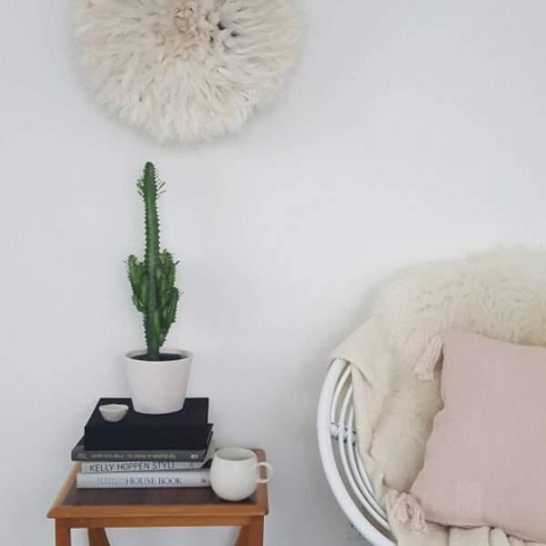 Juju hat et cactus