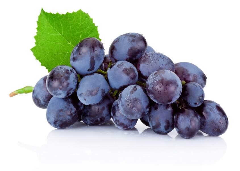 Le marc de raisin