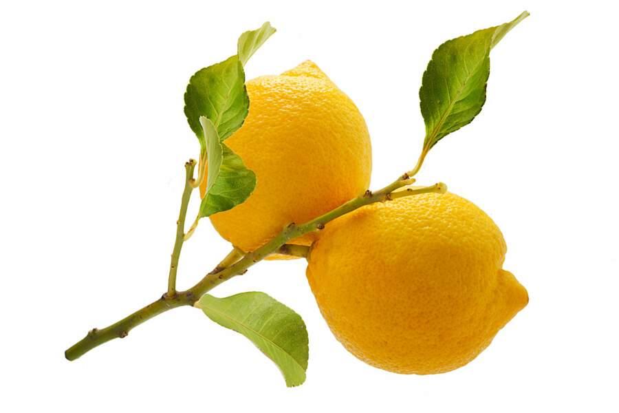 L'orange amère (bigarade)