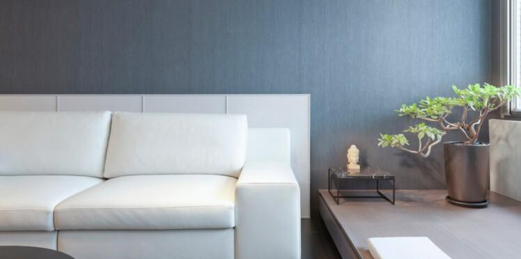 style exquis dernière mode pas cher à vendre J'ai testé : nettoyer un canapé en cuir : Femme Actuelle Le MAG